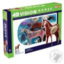 4D Vision Horse Anatomy Model (26 Pieces for Ages 8 and Up) (Biology Model),4D Master